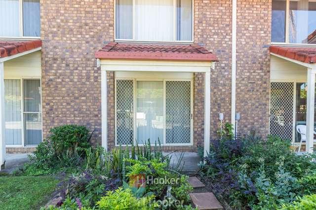 74/3 Costata Street, Hillcrest QLD 4118