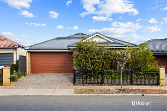 53 Hayfield Avenue, Blakeview SA 5114