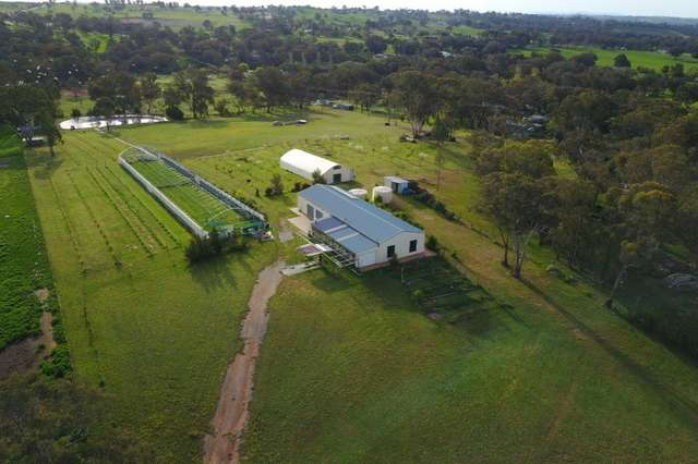 22 Browns Lane, Young NSW 2594