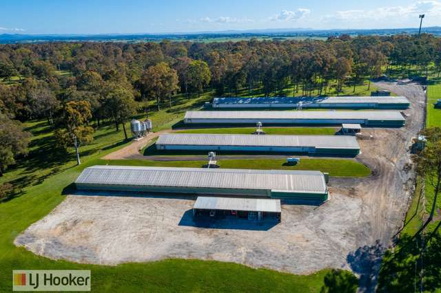 667 Seaham Road, Nelsons Plains NSW 2324