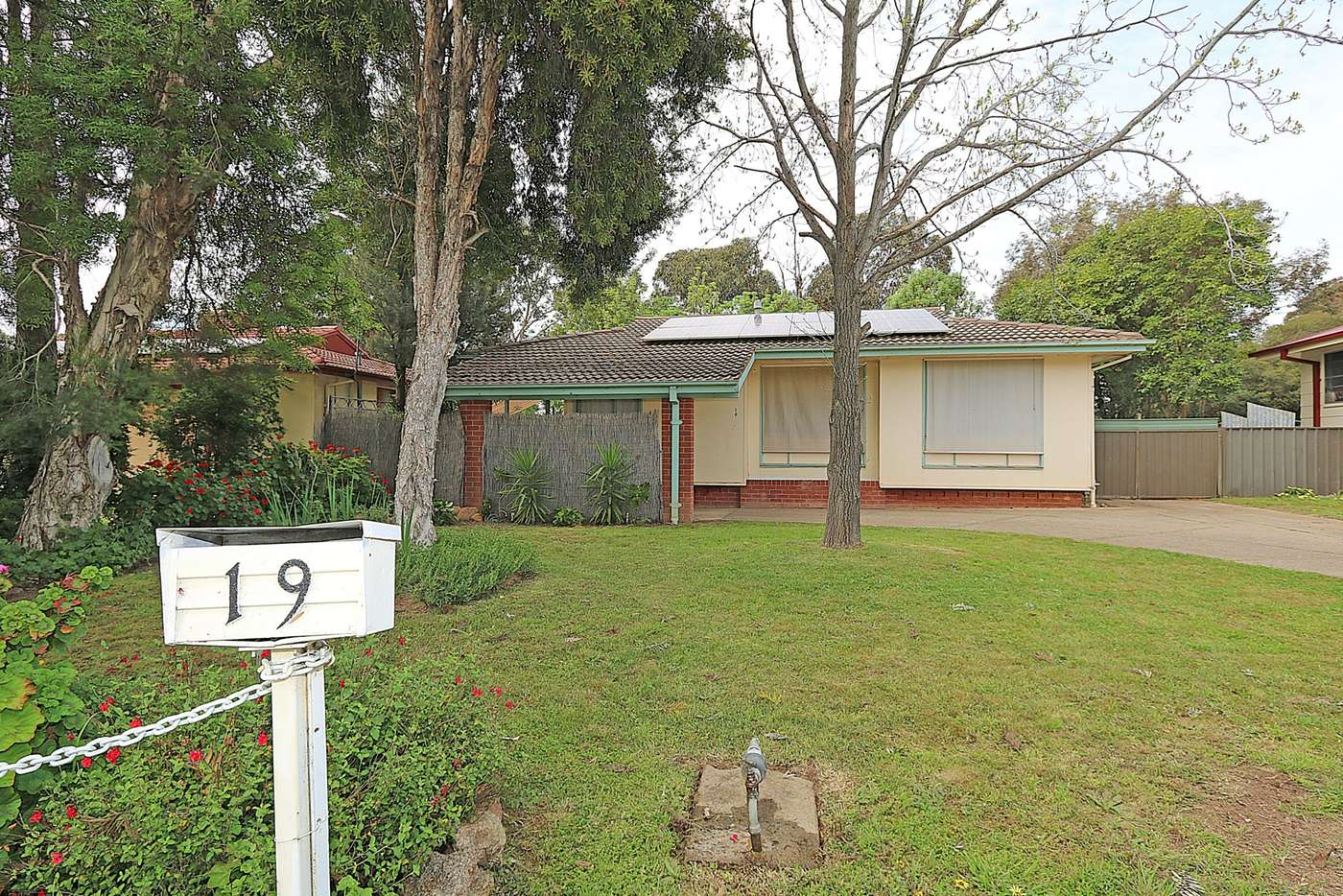 Main view of Homely house listing, 19 Awaba Avenue, Tolland NSW 2650