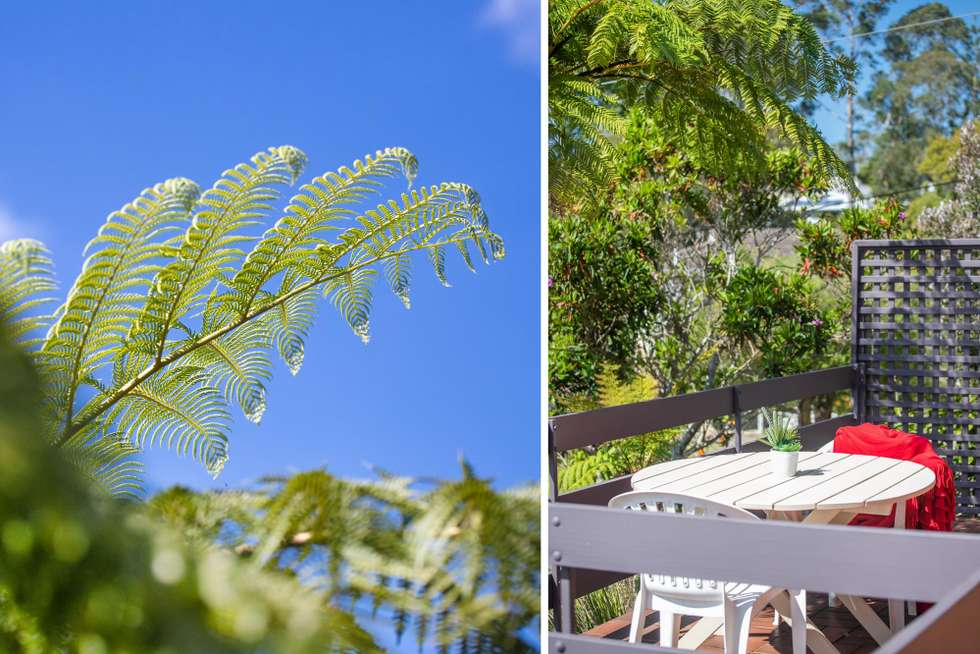 Second view of Homely house listing, 6 Treetops Crescent, Mollymook NSW 2539