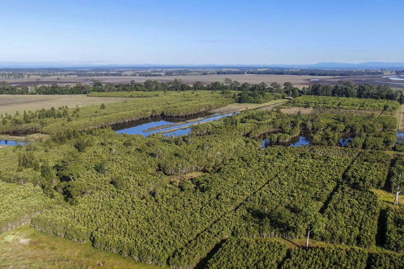 Main view of Homely residentialLand listing, 58 Wooli Road, Tucabia NSW 2462