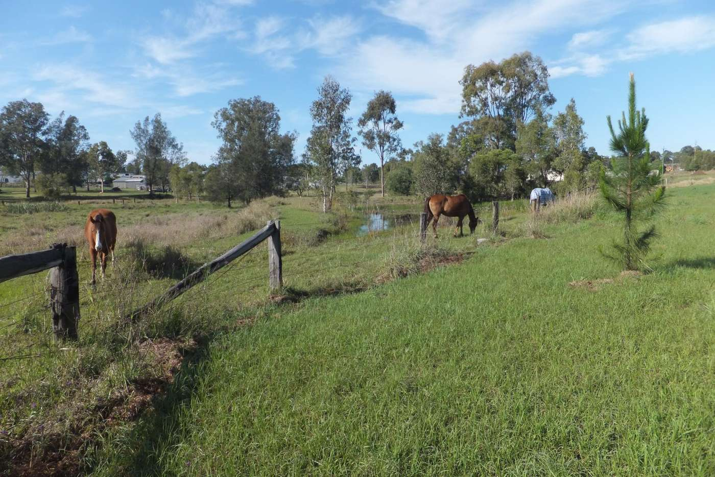 Seventh view of Homely residentialLand listing, Lot 10/28 Adonus Close, Trenayr NSW 2460