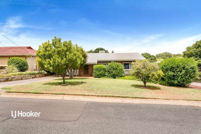 19 Knightsbridge Avenue, Valley View SA 5093