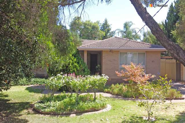 65 Fay Avenue, Kooringal NSW 2650
