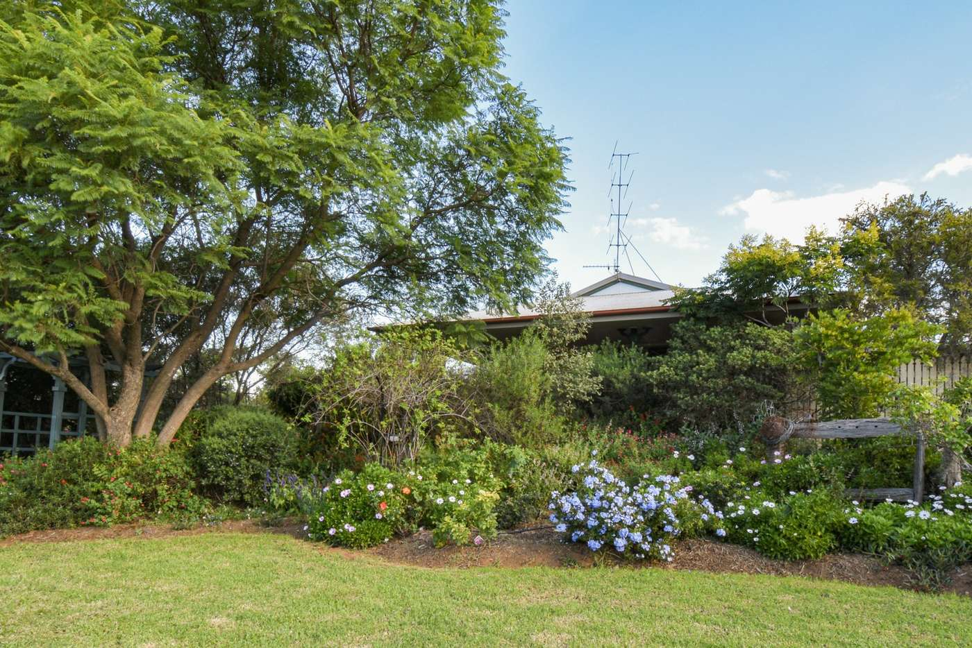 Main view of Homely house listing, 8 Matthew Jones Drive, Rosenthal Heights QLD 4370