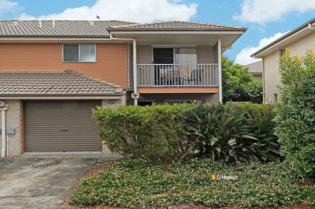53/1 Bass Court, North Lakes QLD 4509
