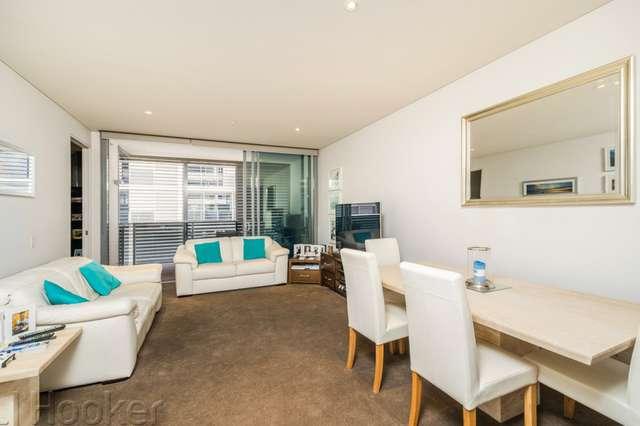 203/8 Adelaide Terrace, East Perth WA 6004