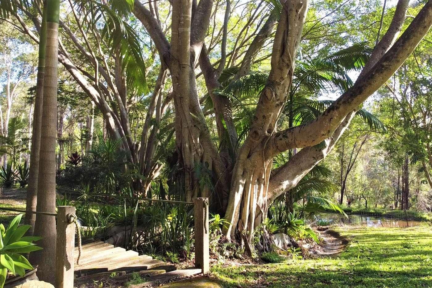 Main view of Homely ruralOther listing, 96 Bonogin Road, Bonogin QLD 4213