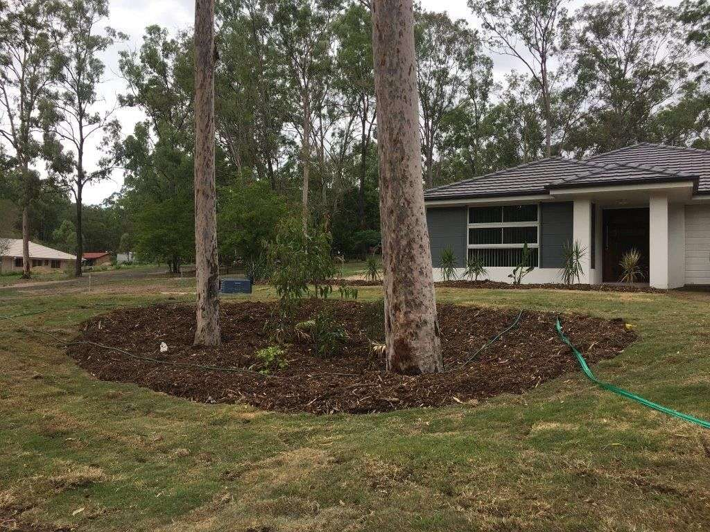 Main view of Homely rural listing, 10A Firetail Avenue, Regency Downs, QLD 4341