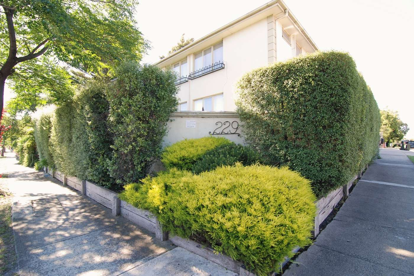 Main view of Homely apartment listing, 1/229 Westgarth Street, Northcote VIC 3070