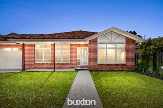 16 Stanley Street, Box Hill South VIC 3128