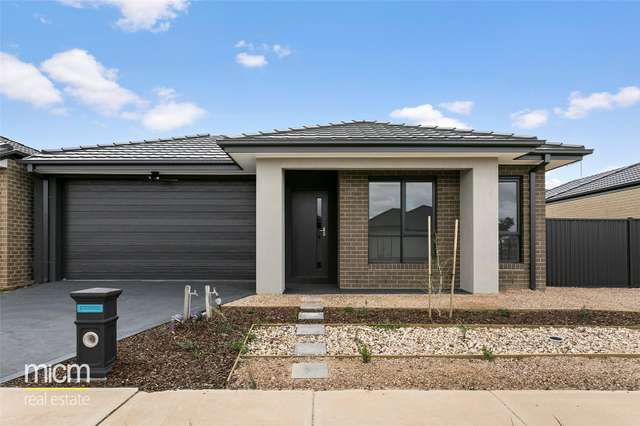 19 Travel Avenue, Tarneit VIC 3029