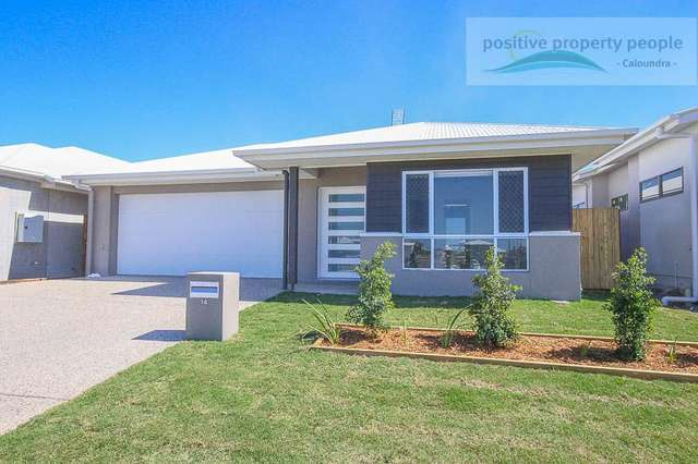14 Marybell Drive, Caloundra West QLD 4551
