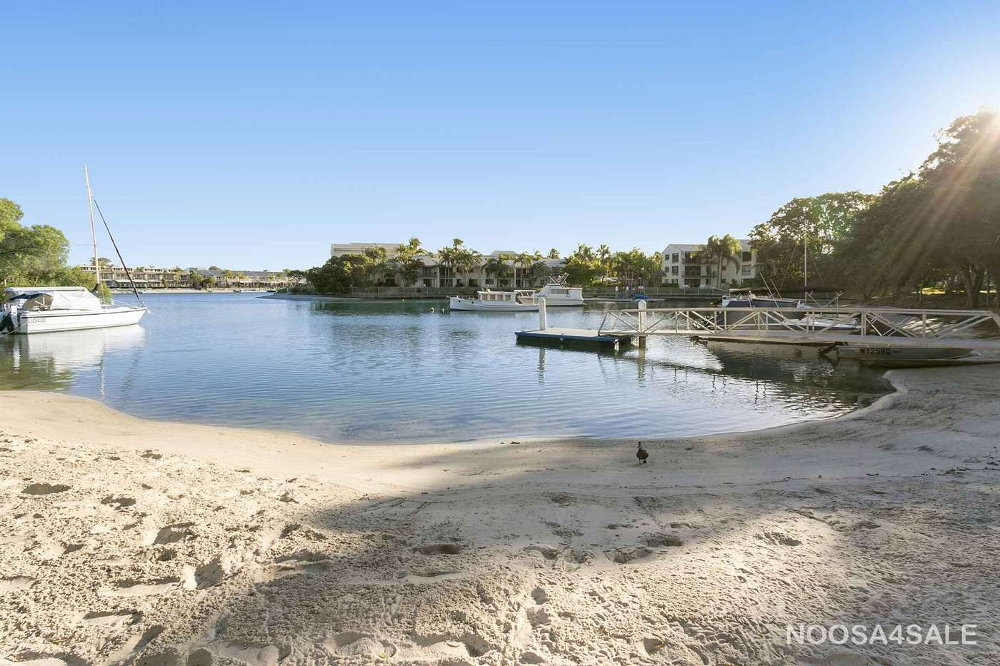 Main view of Homely unit listing, 19/1 Quamby Place, Noosa Heads, QLD 4567