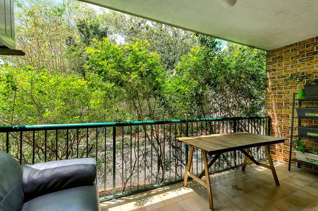 8/44 Cintra Road, Bowen Hills QLD 4006