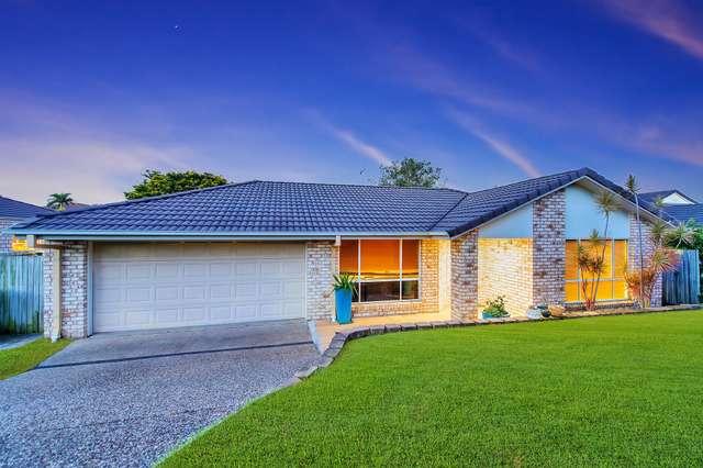 13 Springdale St, Upper Coomera QLD 4209