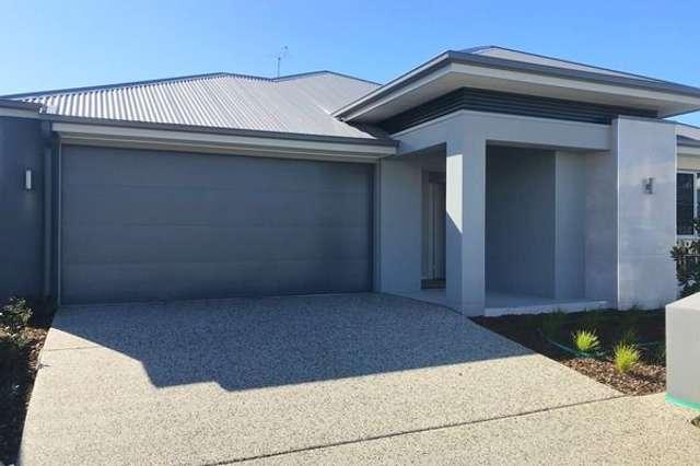 8 Whitsunday Street, Newport QLD 4020