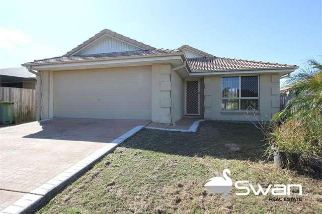 14 Lake Borumba Street, Logan Reserve QLD 4133