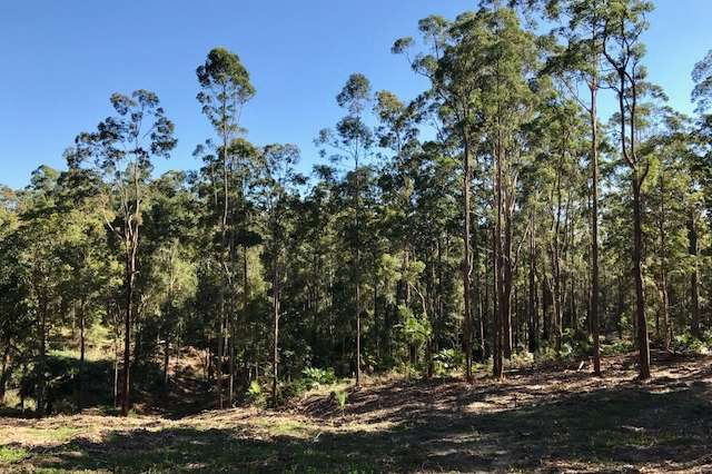 42 Missing Link Rd, Ilkley QLD 4554