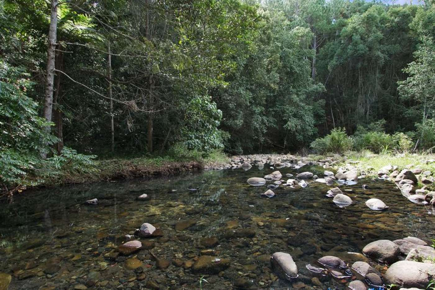 Main view of Homely acreageSemiRural listing, 134 Mt Warning Rd, Uki NSW 2484
