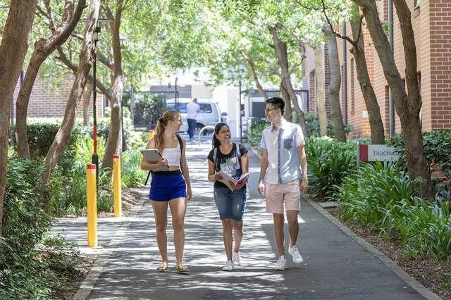 0/90 Carillon Avenue, Newtown NSW 2042