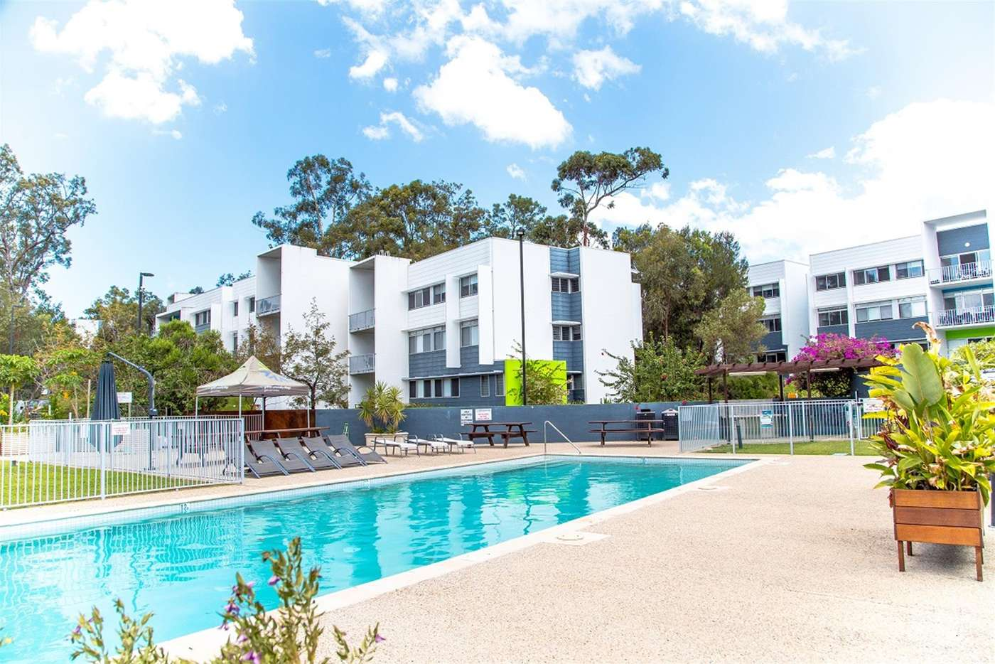 Main view of Homely apartment listing, 0/1 Griffith University Village Village Road, Southport QLD 4215