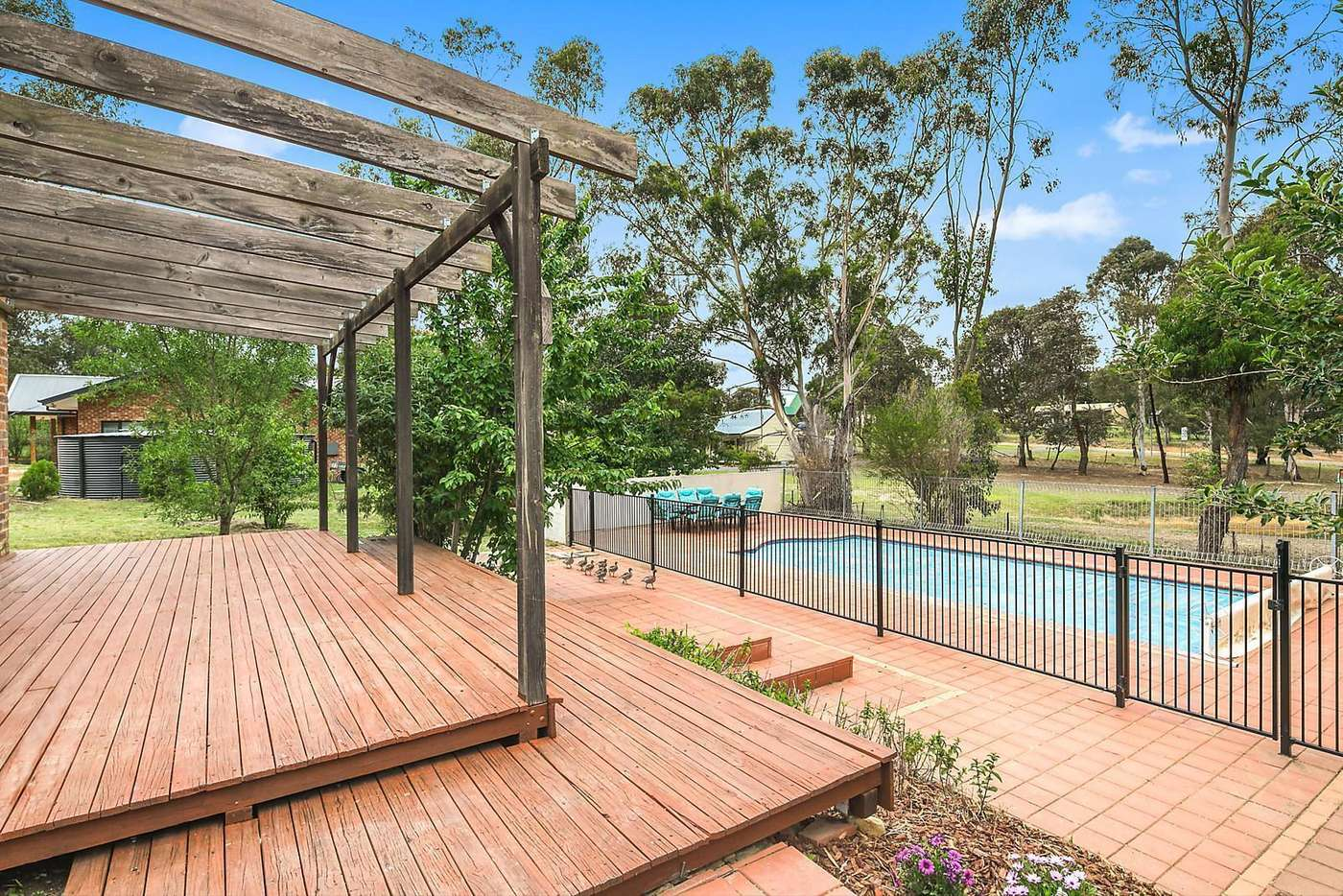 Main view of Homely house listing, 23 Morning Street, Gundaroo NSW 2620