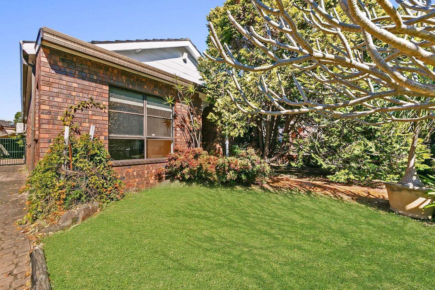 Main view of Homely house listing, 8 Davidson Avenue, Concord NSW 2137