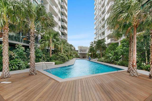 41111/1033 Ann Street, Fortitude Valley QLD 4006