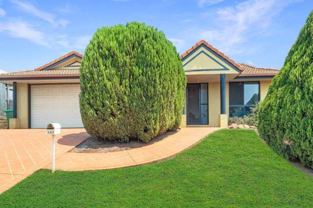 12 Goodman Court, Middle Ridge QLD 4350