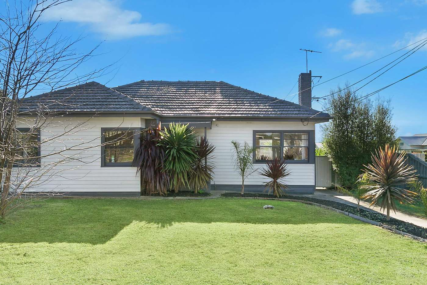 Main view of Homely house listing, 23 Logan Street, Hamlyn Heights VIC 3215
