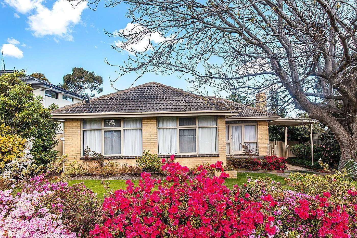 Main view of Homely house listing, 24 Simpson Drive, Mount Waverley VIC 3149