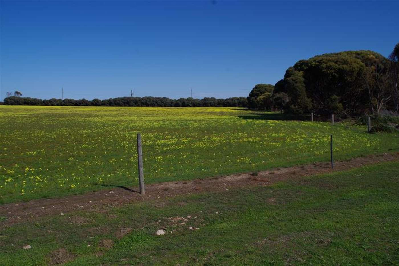 Sixth view of Homely residentialLand listing, Lots/7 & 8, 6468 St Vincent Highway, Edithburgh SA 5583