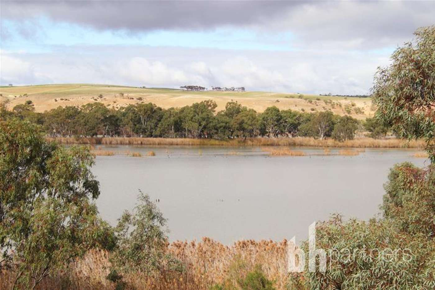 Seventh view of Homely residentialLand listing, Allotment 10 Purnong Road, Mannum SA 5238