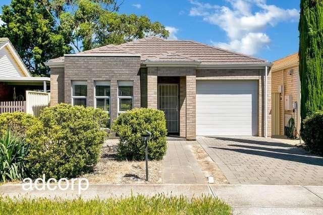 7 Abelia Avenue, Flinders Park SA 5025