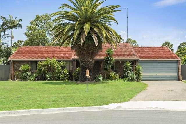 14 Cassia Court, Palm Beach QLD 4221