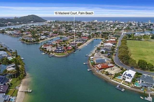 16 Mackerel Court, Palm Beach QLD 4221