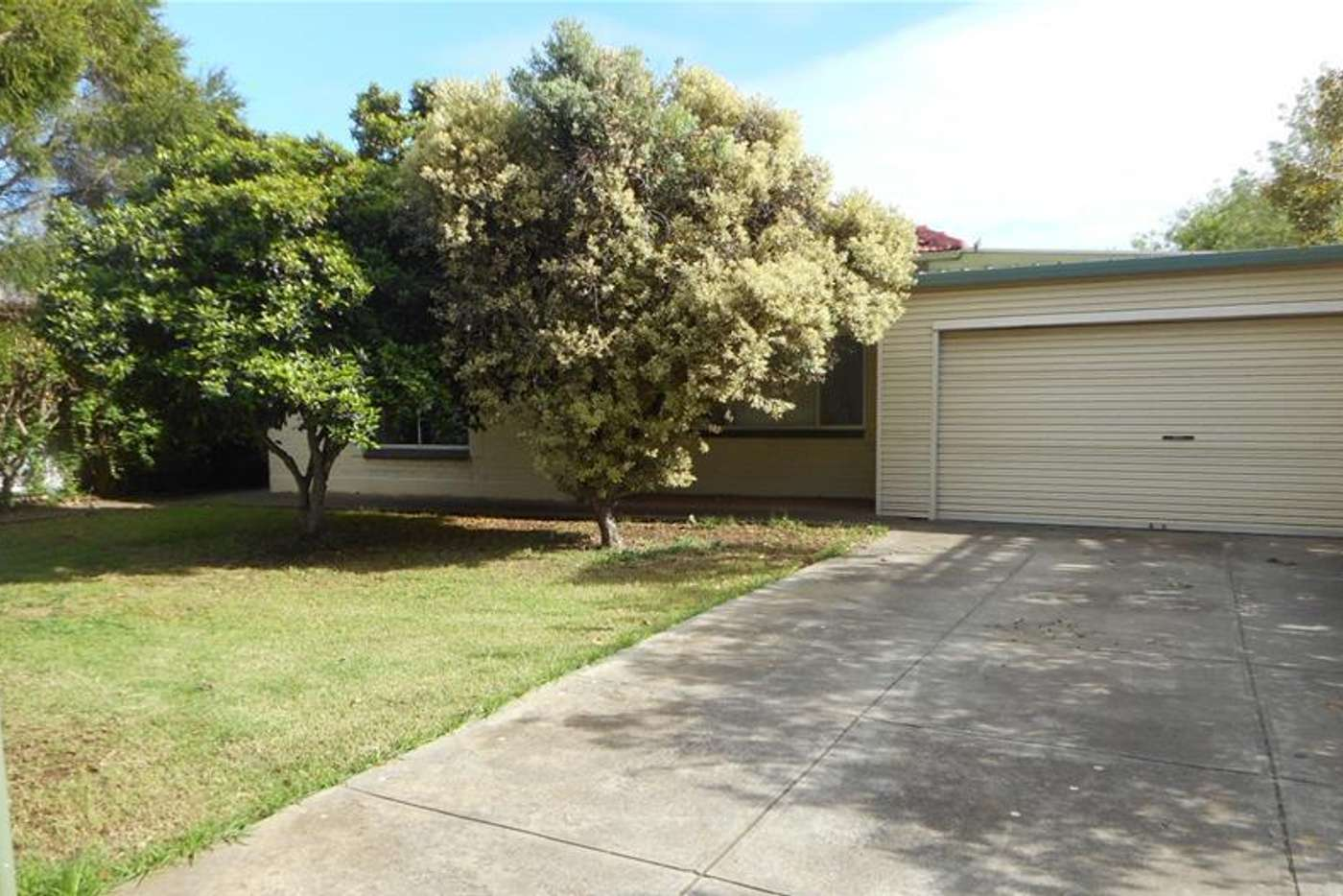 Main view of Homely house listing, 54 Lewis Street, Brighton SA 5048