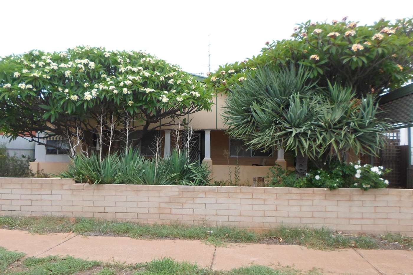 Main view of Homely house listing, 61 Herbert Street, Whyalla SA 5600