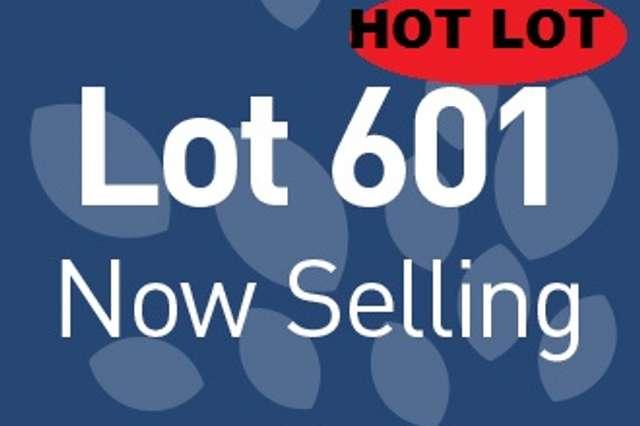 Lot 601 Barfield Rd, Hammond Park WA 6164
