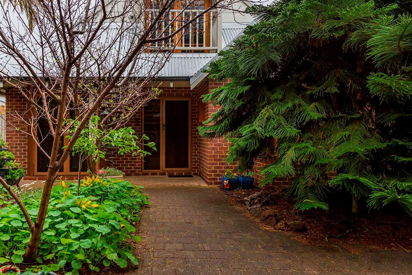Seventh view of Homely house listing, 97 Clifton Street, Nedlands WA 6009