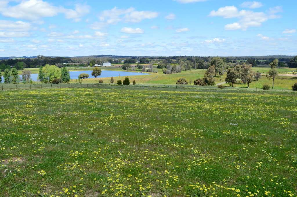 Main view of Homely  listing, Lot 3319 Scaffidi Place, Donnybrook, WA 6239