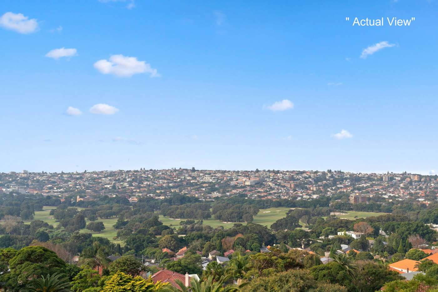 Main view of Homely house listing, 133 Victoria Road, Bellevue Hill NSW 2023