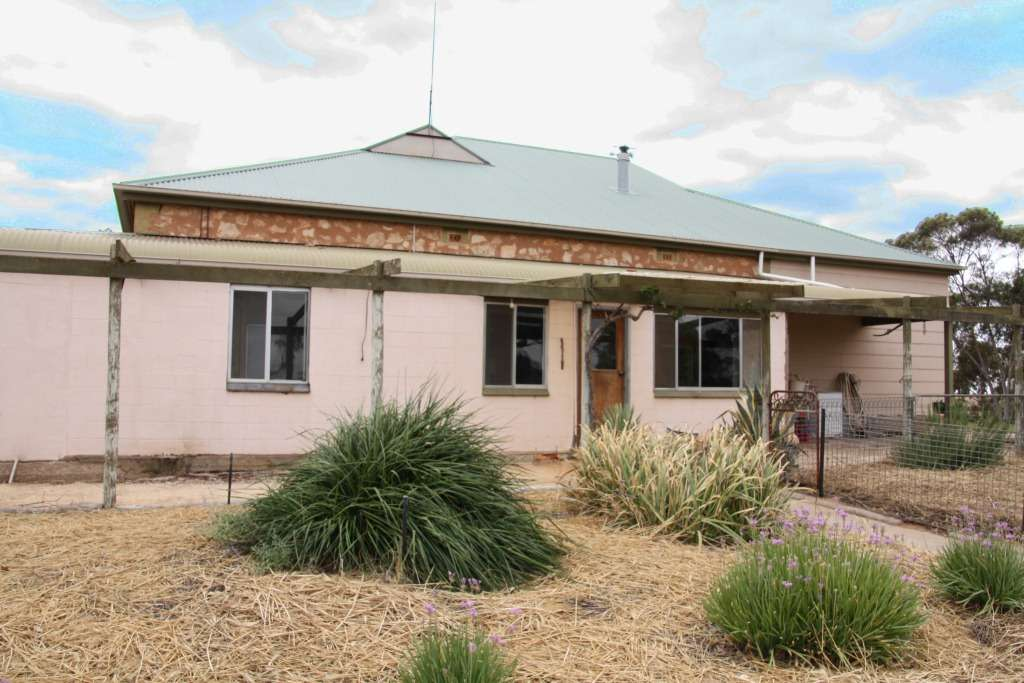 Main view of Homely house listing, 1520 Wormald Rd, Caliph, Loxton, SA 5333
