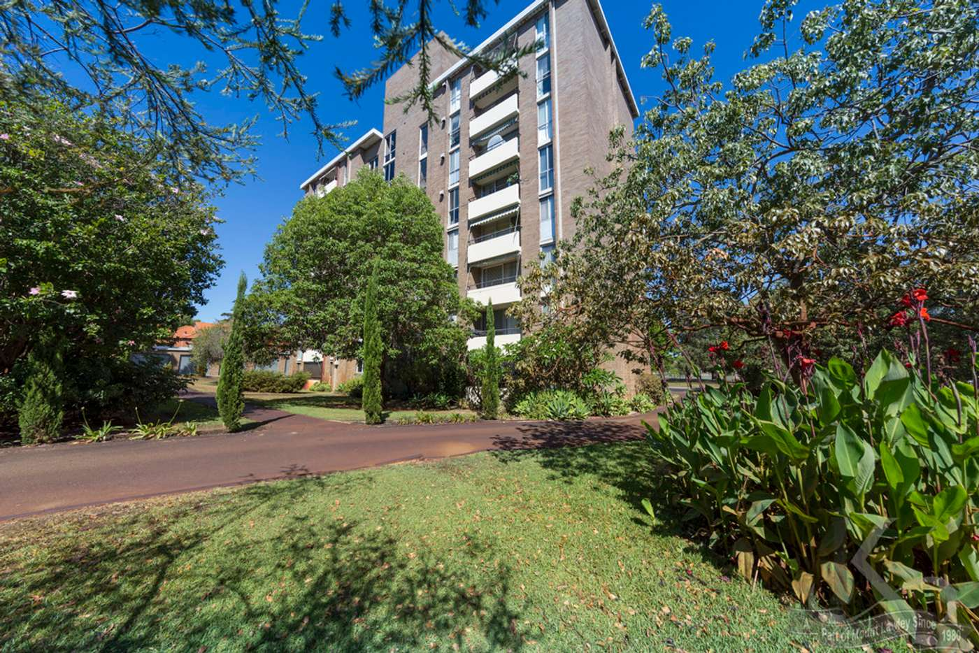 Main view of Homely apartment listing, 5/7 Clifton Crescent, Mount Lawley WA 6050