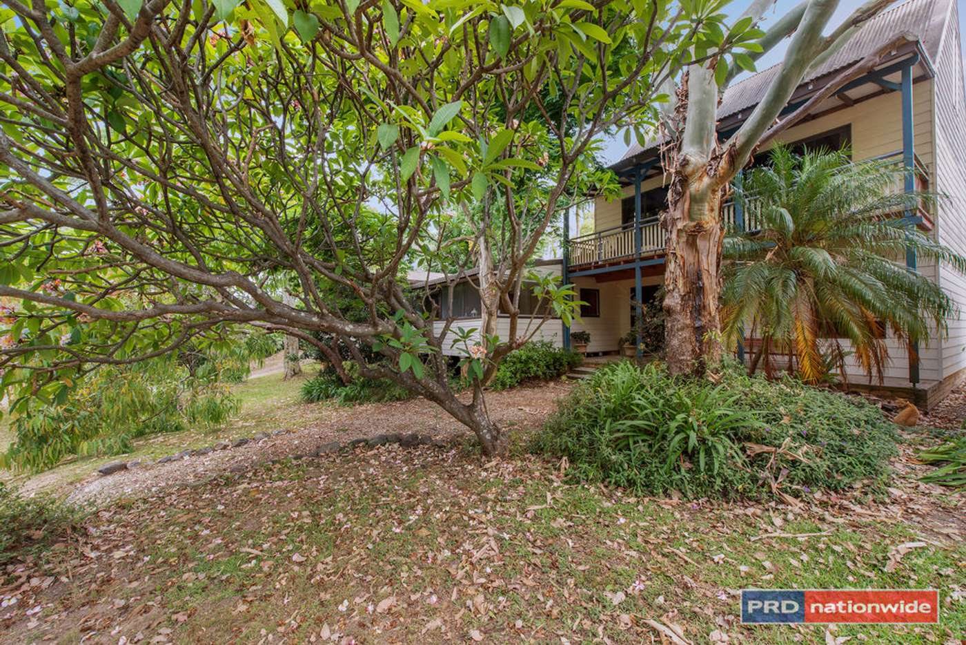 Main view of Homely house listing, 127 Holloways Rd, Sandy Beach NSW 2456