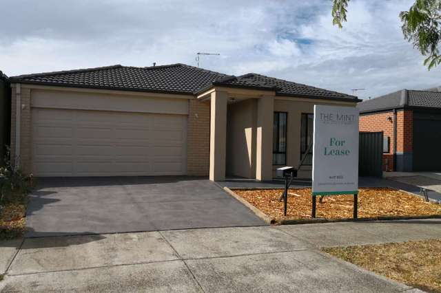 4 Torbreck Avenue, South Morang VIC 3752