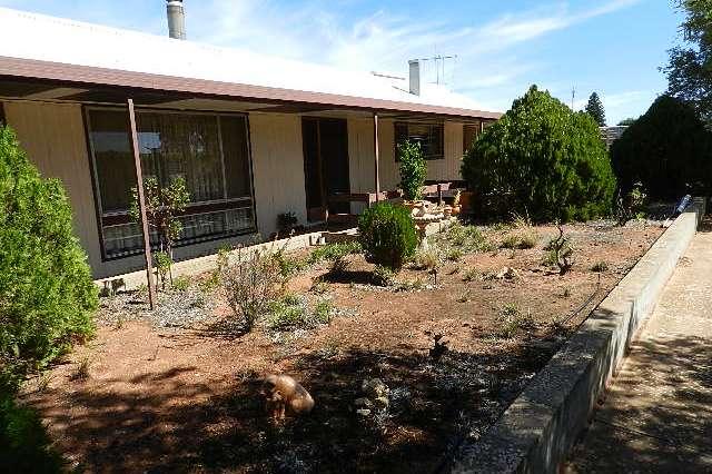 53 Gaskell Road, Barmera SA 5345